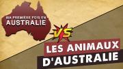 animaux australie