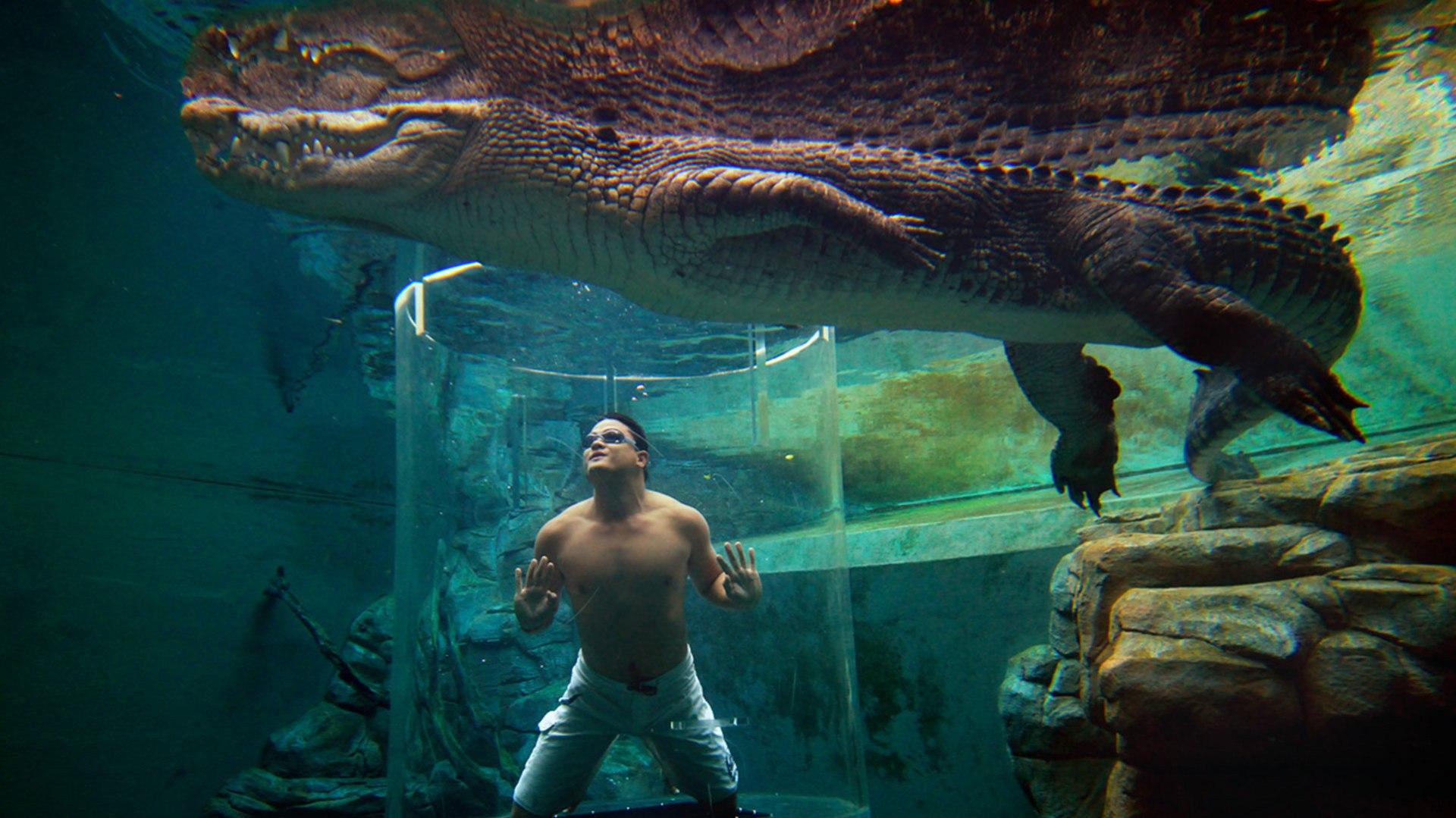 Crocosaurus-Cove